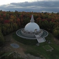 grafton peace pagoda
